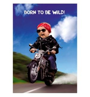 BD/Born To Be Wild