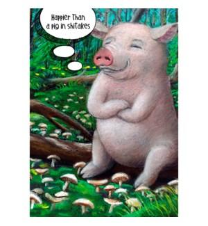 BD/Pig In Shitakes