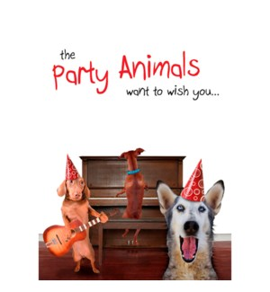BD/Party Animals
