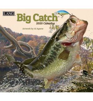 DECORCAL*/Big Catch
