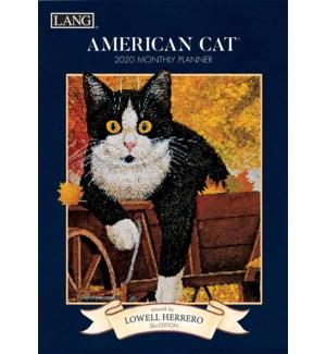MPLAN*/American Cat'