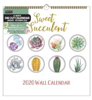 DCSPRLCAL/Sweet Succulent