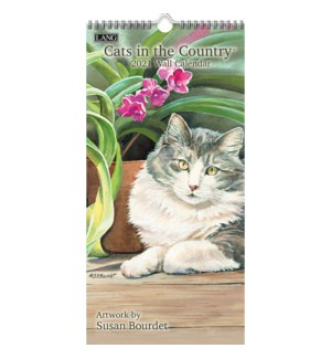 VRTWCAL/Cats in the Country*