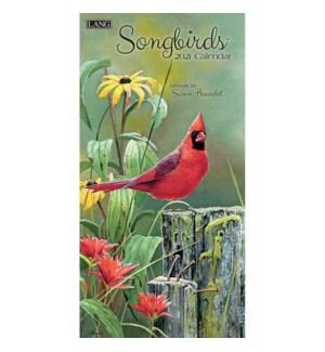 VRTWCAL/Songbirds*