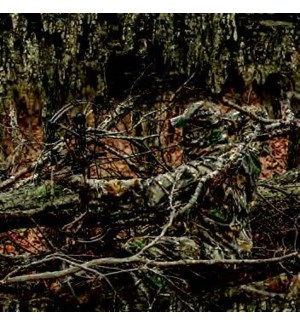 WALCAL/Realtree Hidden Hunter