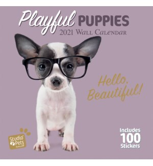 WALCAL/Studio Pets Puppies