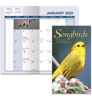 2YRPLAN/Songbirds*