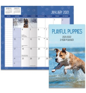 2YRPLAN/Playful Puppies*