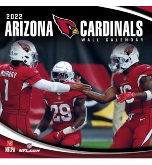 TWCAL/Arizona Cardinals