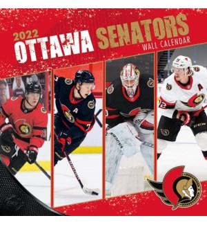 TWCAL/Ottawa Senators