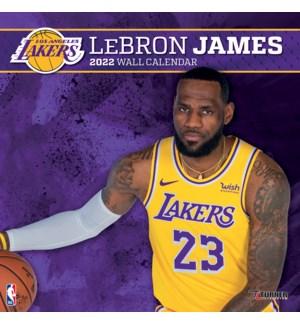 PLRWCAL/Lakers Lebron James