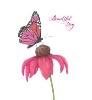 BD/Beautiful Day