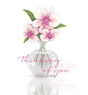 TH/Thinking Of You Orchids