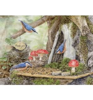 BXNCARD/Fairy Garden