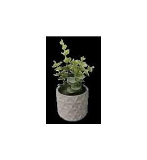 PLANT/Greige Faux Succulent