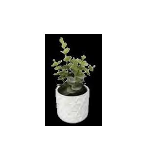 PLANT/White Faux Succulent