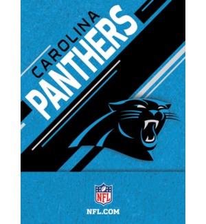 FLIPNTSET/Carolina Panthers