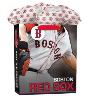 LGGOGOBAG/Boston Red Sox