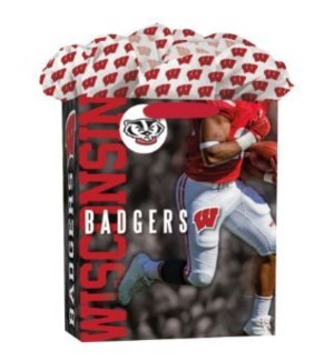LGGOGOBAG/Wisconsin Badgers