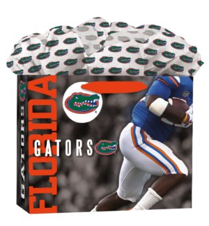 MDGOGOBAG/Florida Gators