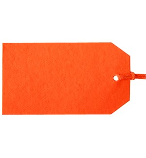 GIFTTAG/Gift Tags Orange