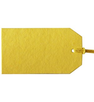 GIFTTAG/Gift Tags Yellow