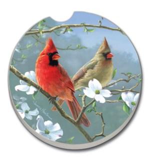 CARCSTR/Bulk Songbird Cardinal