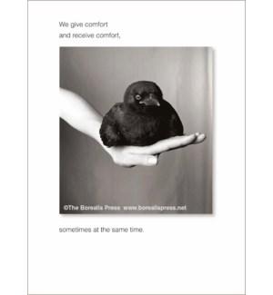 EDB/We give comfort