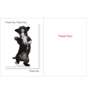 TY/Thank You,