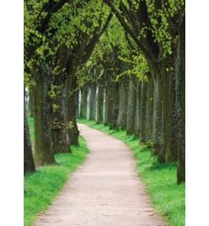 SY/Cherished Memories