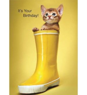 BD/It's Your Birthday