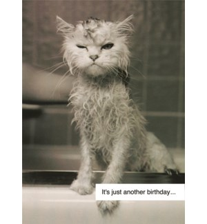 BD/It's just another birthday