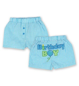 DIAPERCOVER/1st Bday (Blue)