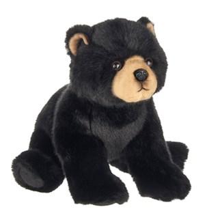 BEAR/Asher