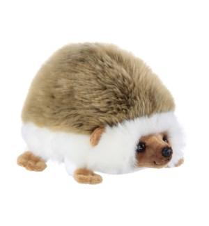 HEDGEHOG/Hedger Hedgehog