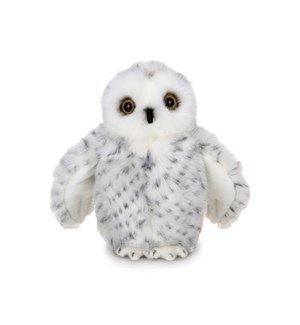 OWL/Drift
