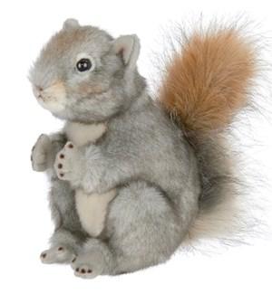 SQUIRREL/Peanut