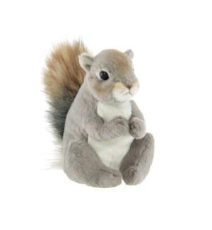 SQUIRREL/Lil' Peanut Squirrel