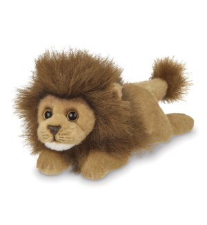 LION/LIL' PRINCE