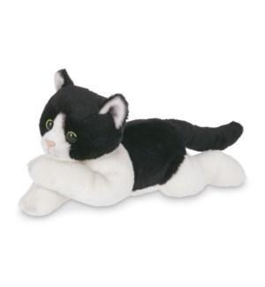 CAT/Lil' Domino