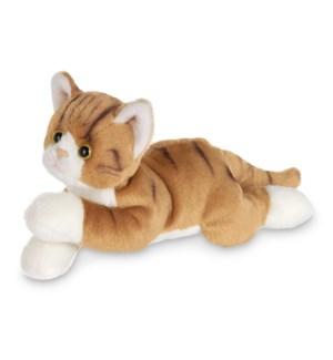 CAT/Lil' Tabby