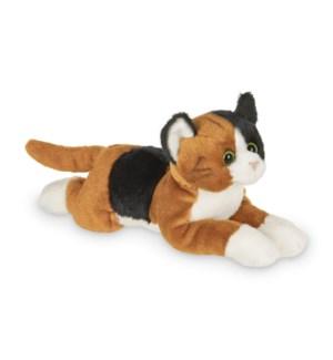 CAT/Lil' Callie