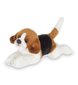 DOG/Lil' Hunter