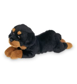 DOG/Lil' Gunner