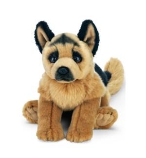 DOG/Chief (German Shepherd)