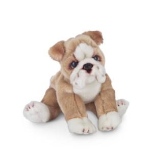 DOG/Tug (Bulldog)