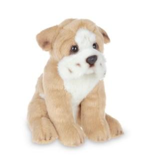 DOG/Lil' Tug