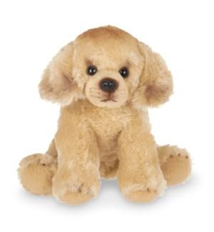 DOG/Lil' Goldie