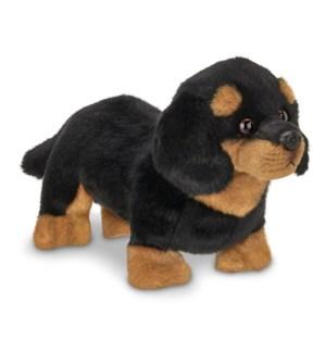 DOG/HARLEY (DASCHUND)