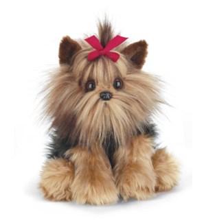 DOG/Chewie